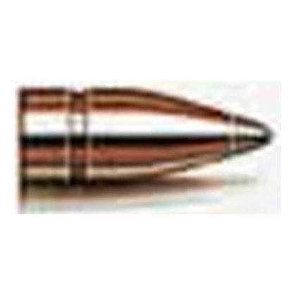 7.62mm .310 123gr SP /100