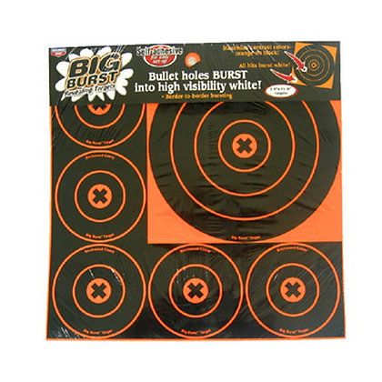 "Big Burst 8"" and 4"" - 18 Targets"