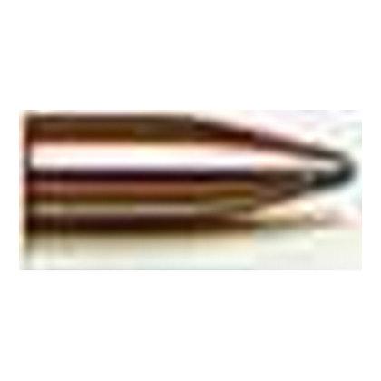 22 Cal .224 50gr SPSX /100