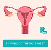 IUD Fact Sheet Download - Clinic 66, Chatswood