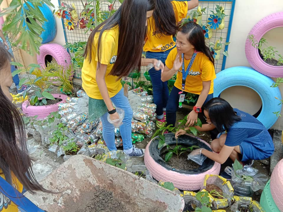 Interact in Recycled Plantbox