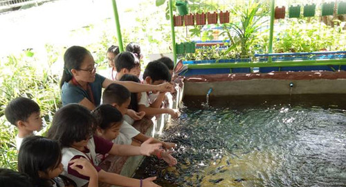Legacy Project: Waste Water Treatment