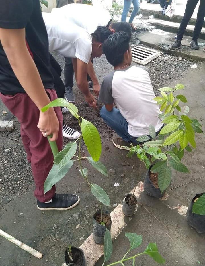 ALS Tree Planting