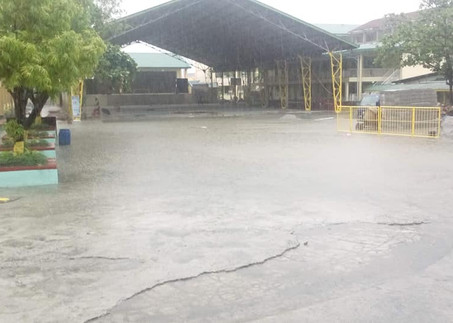 INHS Drainage System