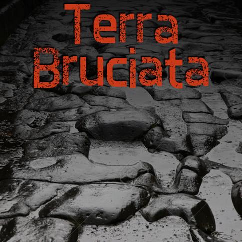 Terra Bruciata, novel