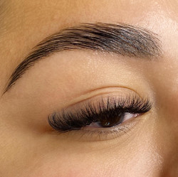 Bold Brows & Lashes