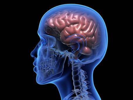 A Harvard Study, Nutrition and Stroke