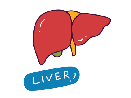 Fatty Liver - What You Need to Know