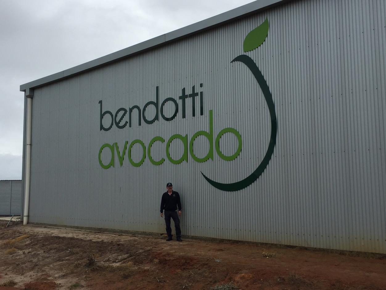 Bendotti Avocado Cut Lettering