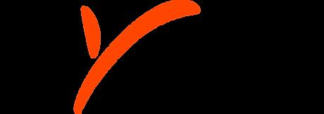 1200px-Payoneer_logo.svg.png
