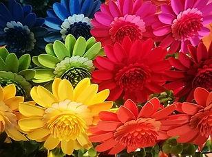 Flowers for Life 1.jpg