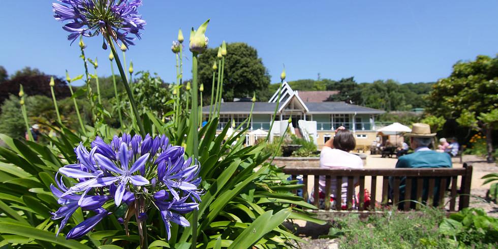Botanic Gardens, Ventnor