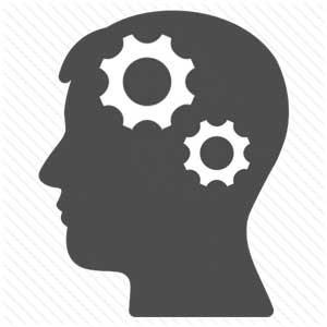 Fast Brain / Slow Brain