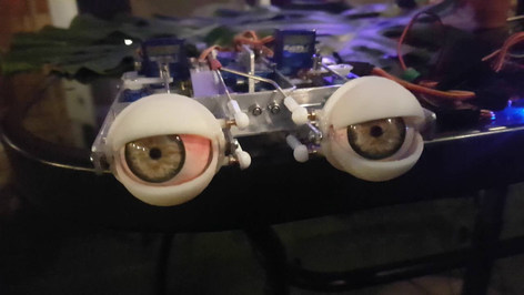 Animatronic eye mechanism