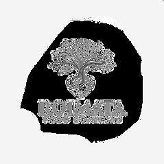 Roimata_Food_CommonsR201.png