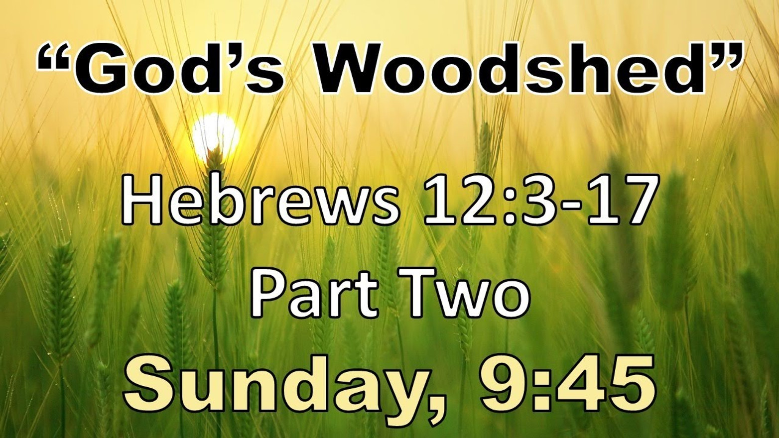 """""""God's Woodshed"""" (Hebrews 12:3-17) (Part 2)"""