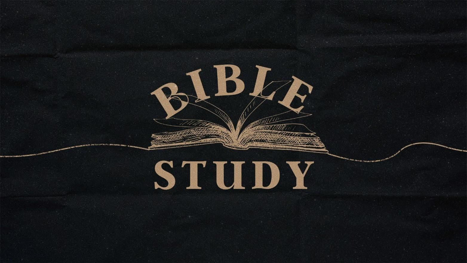 Hebrews 12:3-17 Follow Up Study