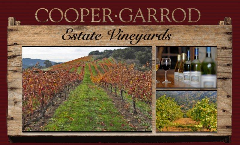 Cooper Garrod Vineyard