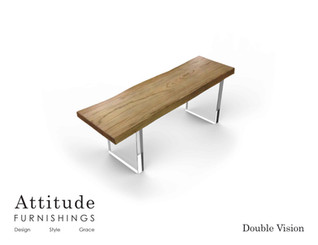 Double Vision Coffee Table