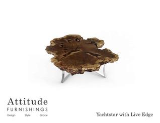 Yachstar Live Edge Coffee Table 2