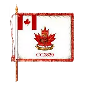 CC2820 Drapeau CLEAR.PNG