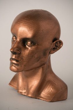 Copper Bust