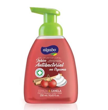 Jabon liquido antibacterial espumoso 250ml Algabo art 6040867