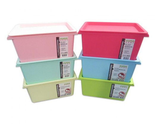 Caja organizadora 5lt 28x19x14cm Kuma