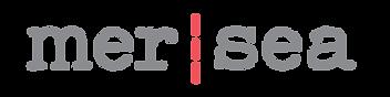 Logo_1200x300-01 (1).png