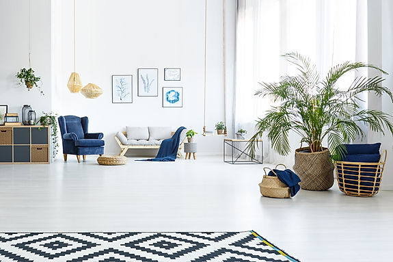 White living room with couch, blue armch