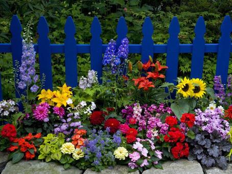 Exterior Feng Shui and Gardening: Honoring Beltane