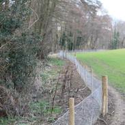 Towards Footbridge