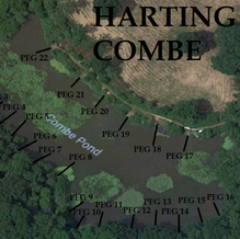 Combe pegs.png