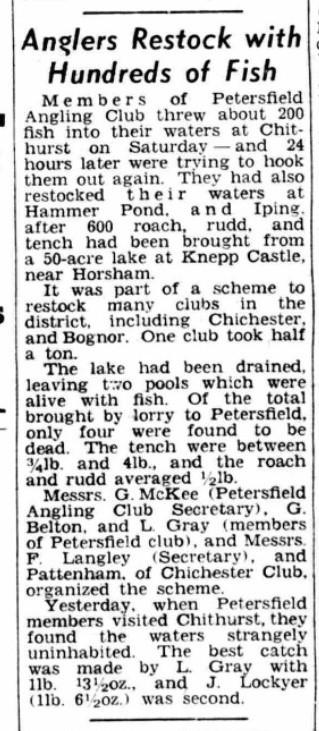 17 December 1951