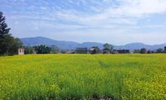 ネパールは日本人が移住するに適した国なのか(極楽篇)