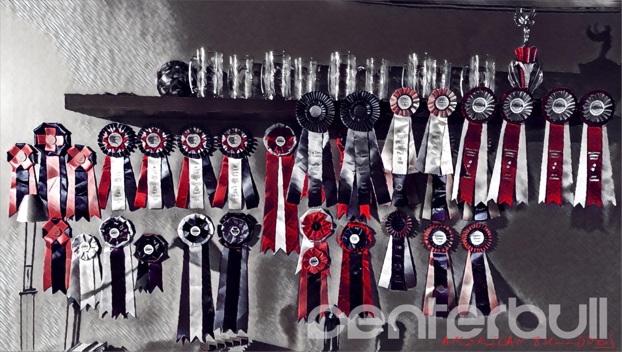 Show Awards