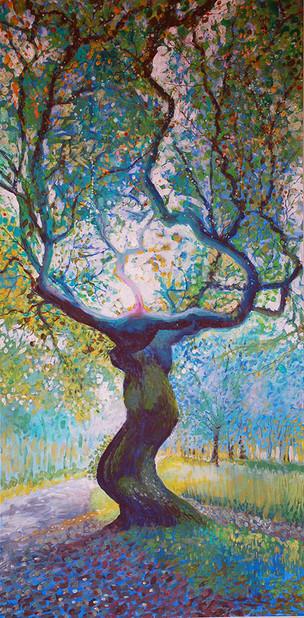 Fasque Tree