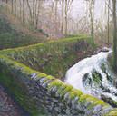 Birnam Hill (£100)