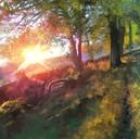 Sunset Loyal Hill  (£30)