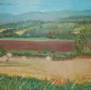 Balgowan Fields (SOLD)