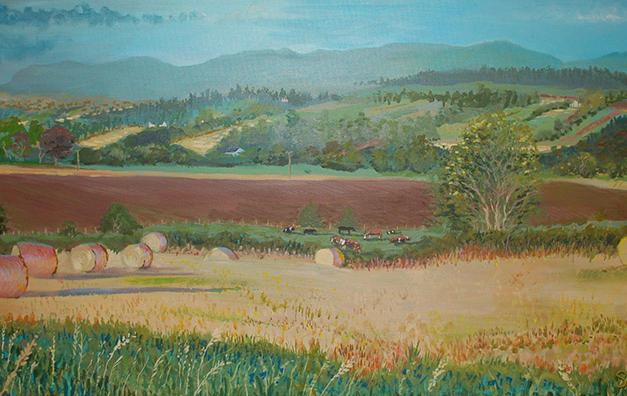 Balgowan Fields