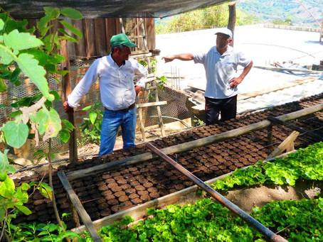 'El crecimiento de la pobreza rural es una bomba de tiempo para la estabilidad social y política