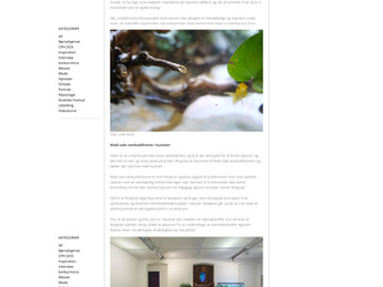 Feature in Danish art magazine Magasinet Kunst