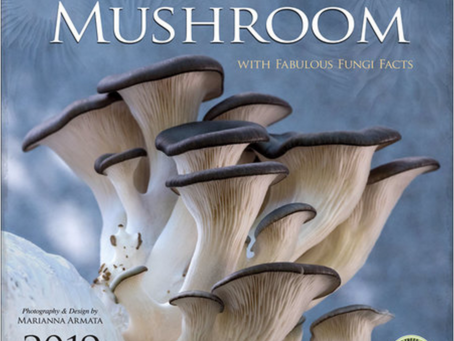 2019 Miraculous Mushroom Calendar is in!