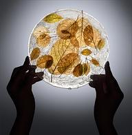 cryogenic leaves