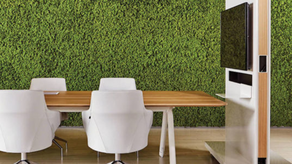 The Biophilic workspace