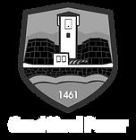 Grad Novi Pazar (za crnu pozadinu).png