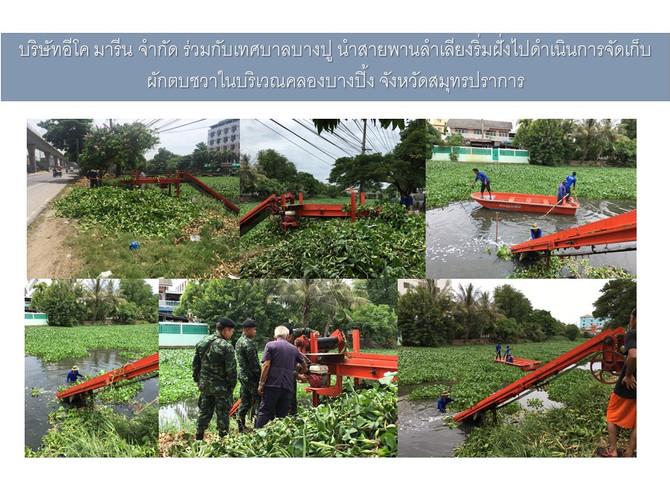 บริษัท อีโค มารีน จำกัด ร่วมกับเทศบาลบางปู นำสายพานลำเลียงริมฝั่งไปดำเนินการจัดเก็บผักตบชวาบริเวณคลอ