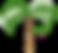 Palm Truck Permits - Mcallen Edinburg Texas permit company