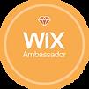 Wix Ambassador Pin.png